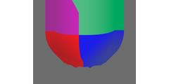 Univision East (UNVSN)