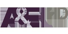 A and E logo